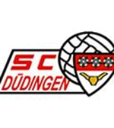 FC Düdingen (2e Int.)
